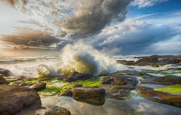 Picture sea, wave, squirt, stones, rocks, dawn, coast