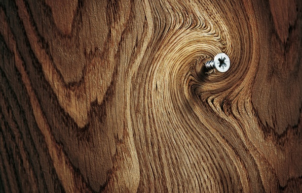 Picture macro, surface, background, tree, Board, wood, thread, screw