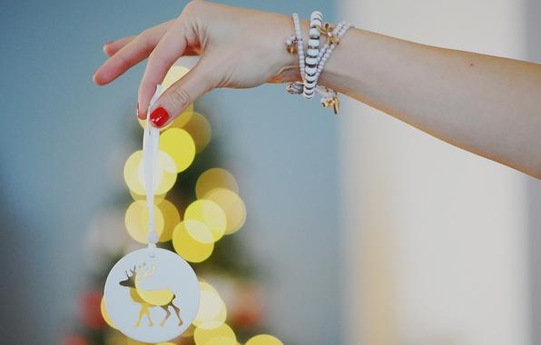 Picture girl, hand, deer, lights, bracelet, manicure