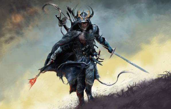 Picture grass, sword, armor, running, Warrior