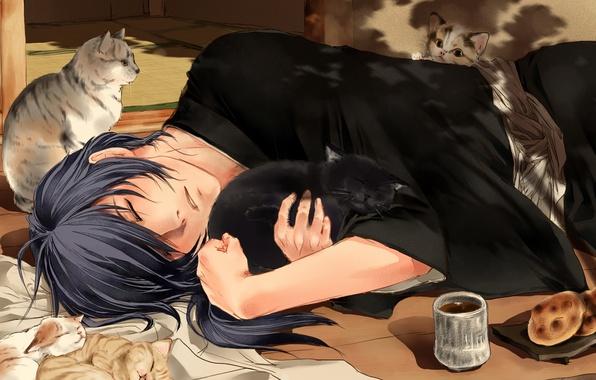 Picture tea, cats, sleeping, guy, Hakuouki, Saitou Hajime, Shinsengumi