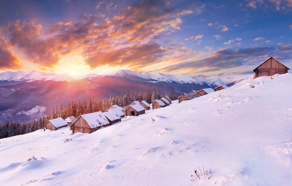 Picture cold, winter, forest, the sun, clouds, snow, landscape, mountains, nature, Wallpaper, home, panorama, wallpaper