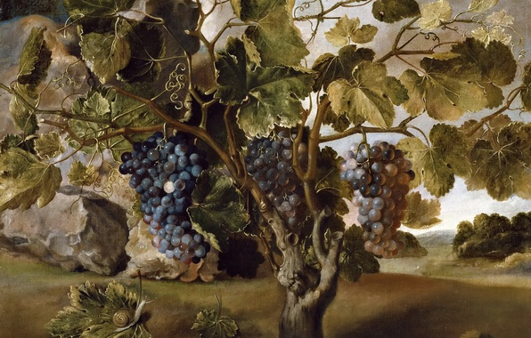 Picture berries, picture, bunch, Thomas HEPES, Landscape with Vine