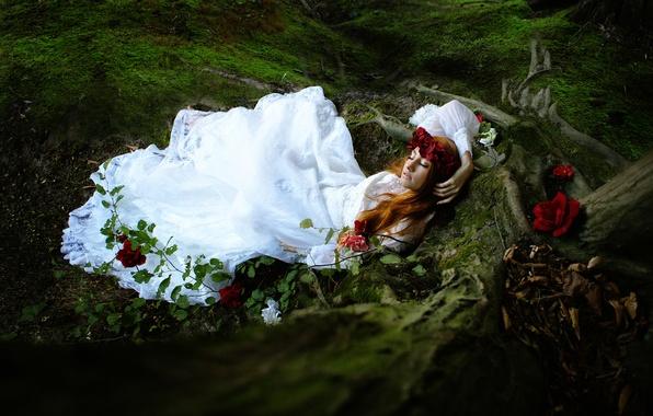 Picture forest, girl, sleep, roses, Sleep sugar