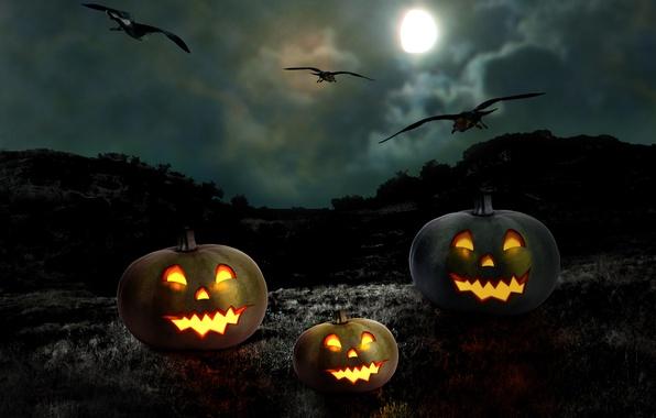 Picture night, pumpkin, Halloween, moon, Halloween, the full moon, night, holiday, pumpkin, Happy