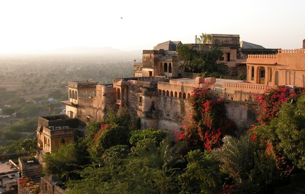 Picture mountain, garden, India, Fort, architecture, Palace, Palace, trees., India, Neemrana, Neemrana, Fort