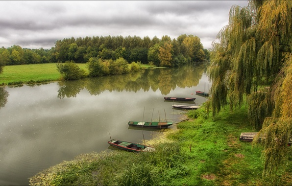 Picture grass, trees, river, boats, Bank, willow