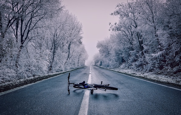 Picture winter, forest, snow, trees, bike, fog, highway, lies, on the road