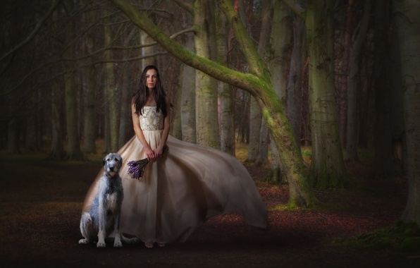 Picture forest, girl, dog, bouquet, dress, waiting