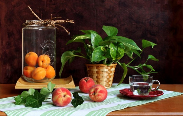 Picture flower, water, Cup, Bank, fruit, still life, peaches, apricots
