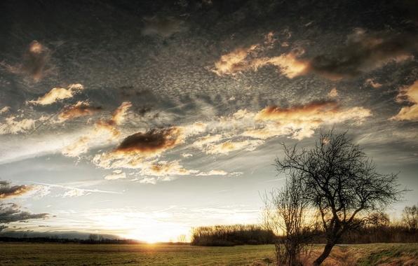 Picture sunset, the steppe, stream, sunrise, the sun