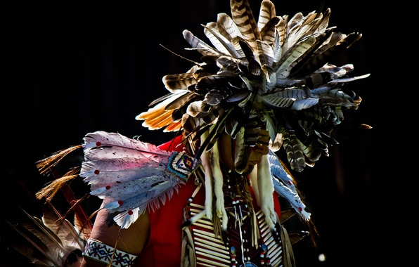 Picture feathers, male, Indian, Pow Wow