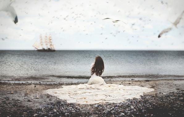 Picture sea, water, girl, birds, ship, seagulls, dress