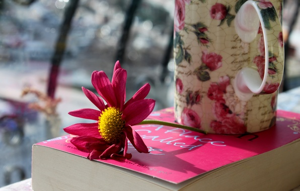 Picture flower, petals, mug, Cup, book, pink
