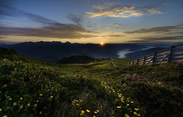 Picture the sun, flowers, mountains, dawn, the fence