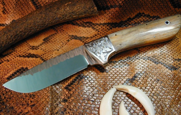 Picture leather, knife, snakes, edged weapons