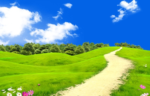 Wallpaper field, summer, the sky, grass, the sun, clouds, trees, flowers, meadow, path