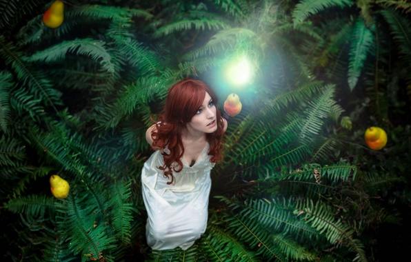 Picture girl, light, the situation, fern, pear