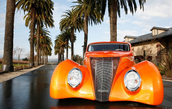 Picture Ford, Tuning, Palm trees, Orange