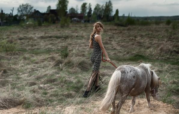 Picture pony, horse, Nastya, Anastasia Shcheglova, Tatiana Mercalova