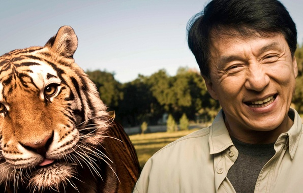 Picture joy, tiger, smile, predator, actor, celebrity, Director, Jackie Chan, stuntman, Jackie Chan, Chinese