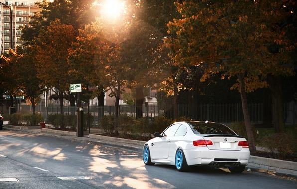 Picture white, BMW, BMW, white, Blik, E92, IND, autumn. the sun