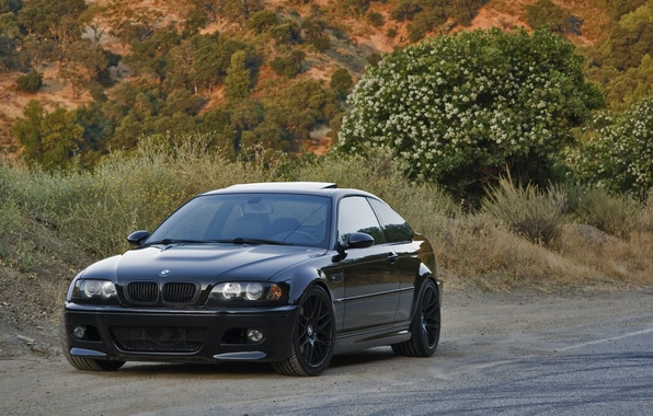 Picture road, trees, reflection, black, bmw, BMW, slope, black, e46