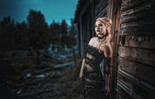Picture girl, night, house