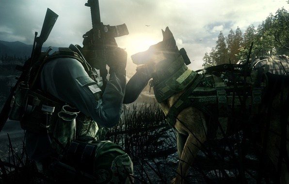 Picture gun, pistol, Call of Duty, game, soldier, weapon, dog, man, sniper, rifle, knife, pearls, vegetation, …