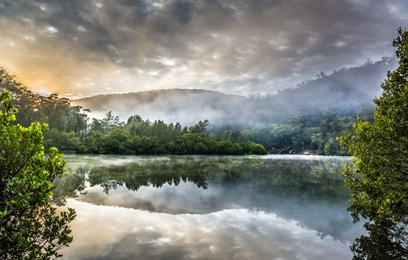 Picture forest, clouds, nature, lake, Australia, Sydney, Berowra Creek