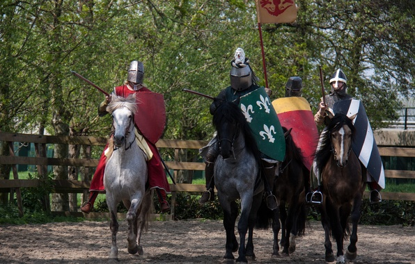 Picture horses, armor, horse, warriors, knights