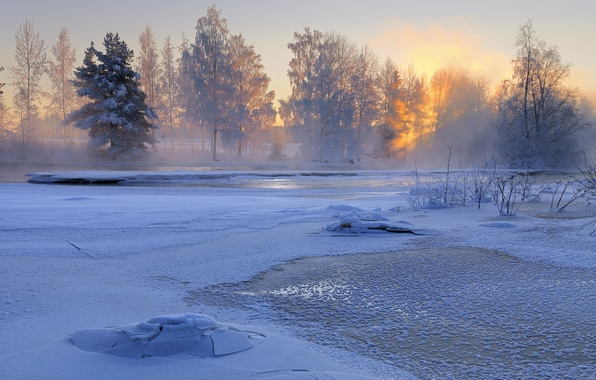 Picture winter, snow, trees, nature, river, sunrise, morning, Sweden, Sweden, Voxnan River, Hälsingland