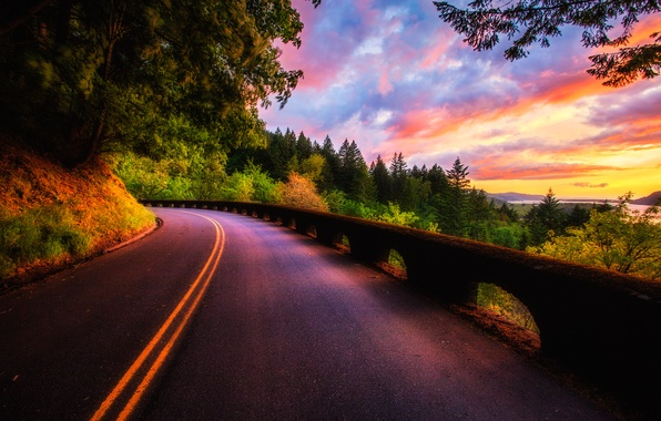 Picture road, forest, the sky, clouds, trees, landscape, sunset, nature, view, color, colors, forest, road, sky, ...