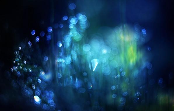 Picture light, spot, bokeh