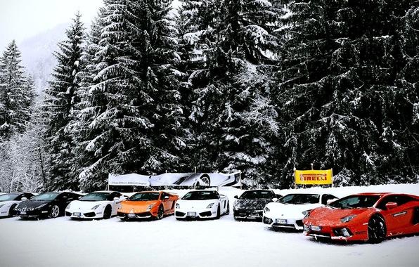 Picture Lamborghini, Gallardo, cars, snow, Aventador, mix