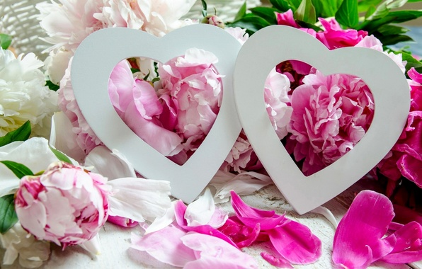 Picture love, flowers, holiday, hearts, peonies