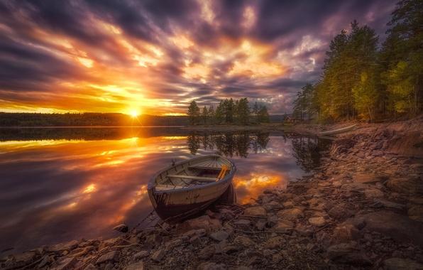 Picture trees, sunset, lake, boat, Norway, Norway, RINGERIKE, Ringerike