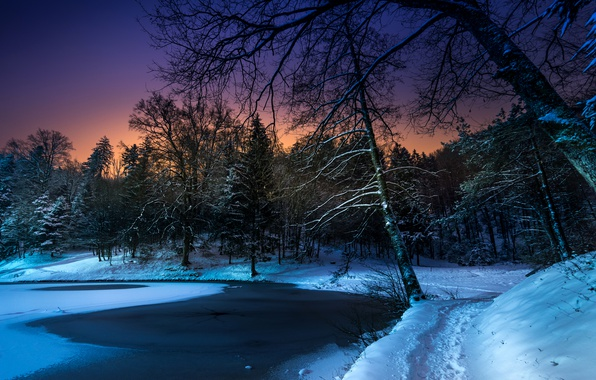 Picture winter, snow, trees, night, pond, Park, path