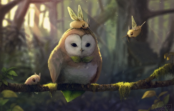 Picture tree, owl, wings, branch, art, collab, creatures
