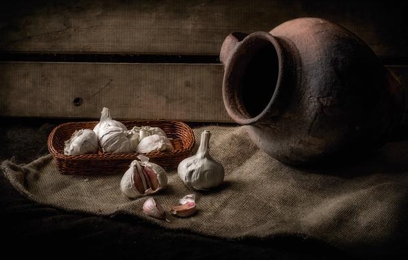 Picture pitcher, still life, basket, garlic