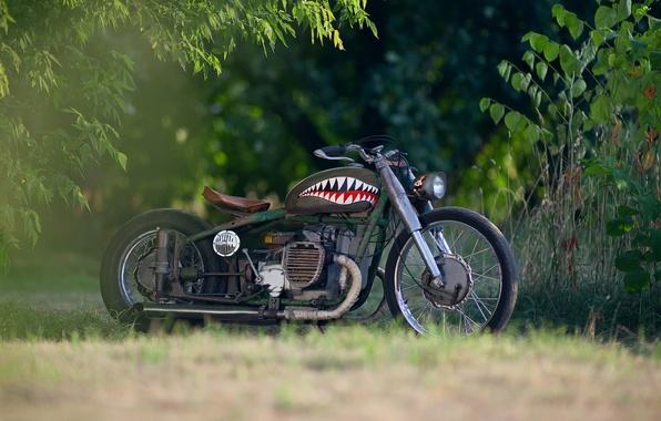 Picture blur, base, motorcycle, steampunk, airbrushing, moto, bike, style, collection, custom, bokeh, steampunk, heavy, Soviet, rat, ...