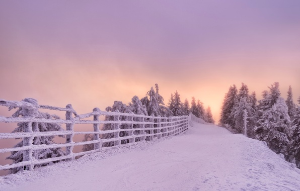 Picture winter, road, snow, trees, sunset, the fence, Romania, Romania, Brasov, Brasov