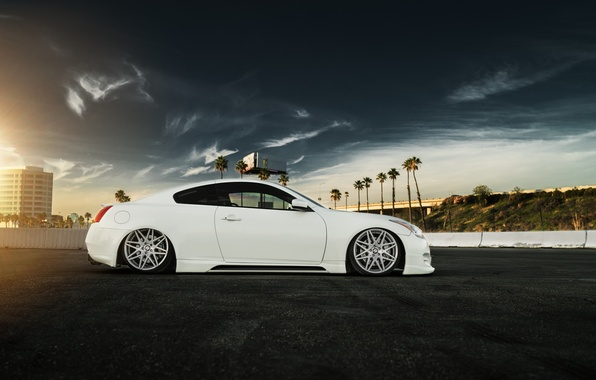 Picture car, white, infiniti, tuning, low, stance, g37