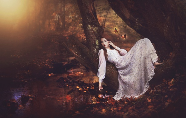 Picture autumn, forest, girl, butterfly, stream, tree, mood, dress
