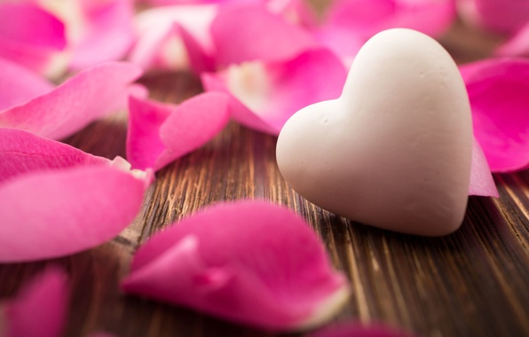 Picture background, Wallpaper, pink, heart, rose, petals, wallpaper, heart, flower, widescreen, background, full screen, HD wallpapers, …