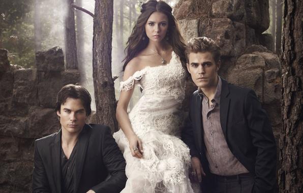 Picture the vampire diaries, Stefan, Elena, Season 2, Damon