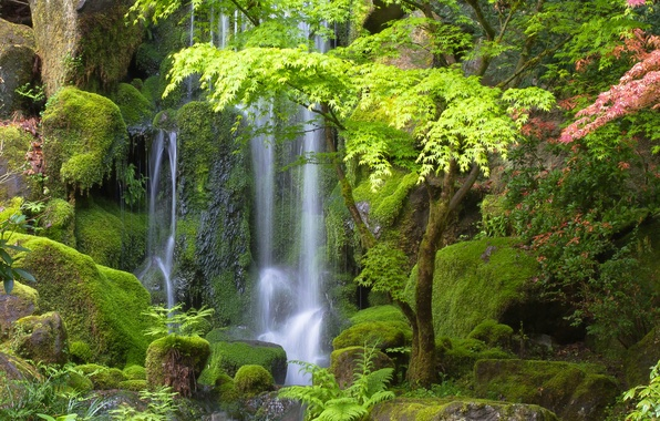 Wallpaper Japanese Gardens Japanese Gardens Waterfall Trees Oregon Oregon Portland