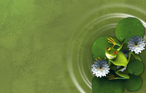 Picture flower, leaves, frog