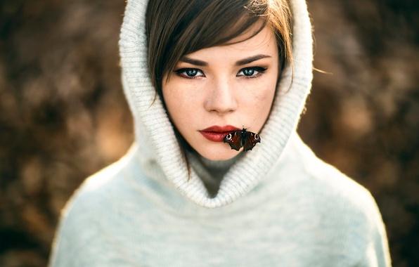 Picture butterfly, girl, sponge