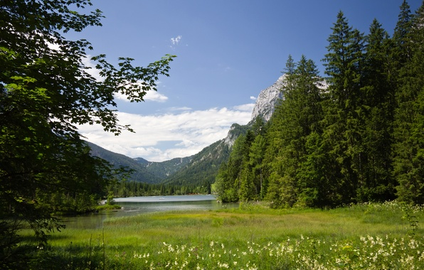 Picture summer, mountains, lake, Germany, Alps